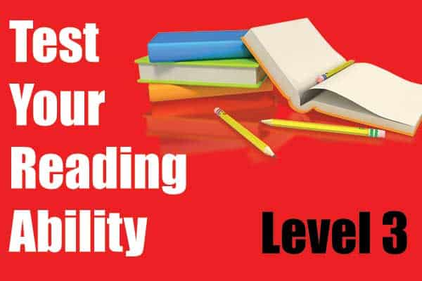 Reading Test  – Level 3